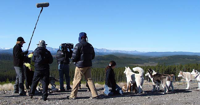 Siberian Husky Canine Animal Actors, Animal Planet, Animal Heros, Oct 2008
